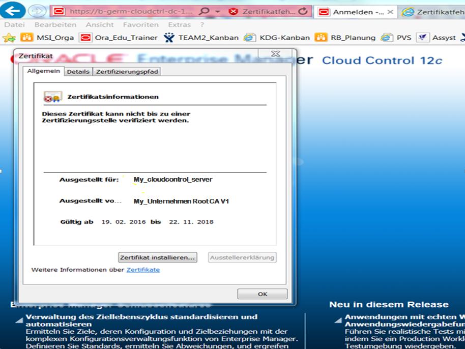 Austausch des Test-SSL-Zertifikats durch ein Unternehmens-ROOT ...